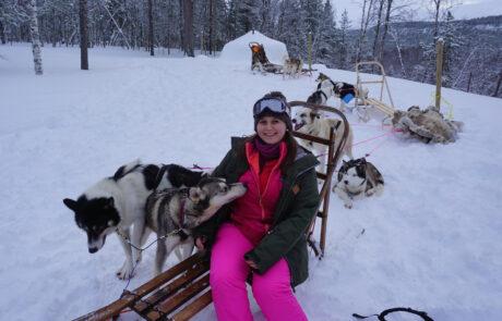 Hundeschlitten und Polarlichter